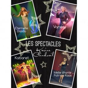 Les-spéctacles-Karine-Clindoeil